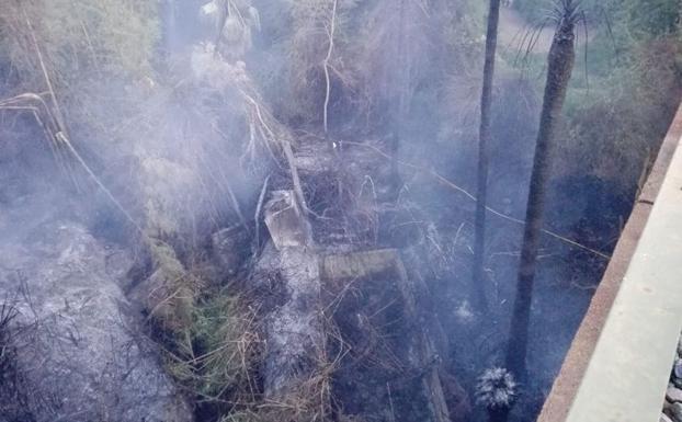 Un incendio arrasa un vivero en torremolinos diario sur for Viveros zona sur