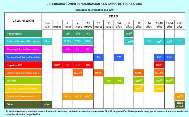 Calendario Vacunal Andalucia 2019.Gobierno Y Comunidades Pactan Un Calendario Vacunal Para Toda La