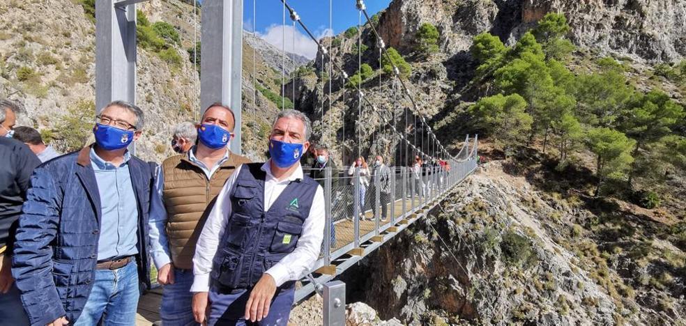 puente%20(1)-kGvC--984x468@Diario%20Sur.