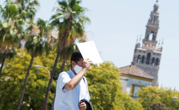 Córdoba y Sevilla tendrán las temperaturas más altas en los próximos días.  / ef