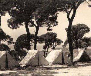 Campamento Vigil De Quiñones Diario Sur